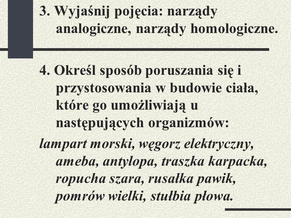 3. Wyjaśnij pojęcia: narządy analogiczne, narządy homologiczne. 4. Określ sposób poruszania się i przystosowania w budowie ciała, które go umożliwiają