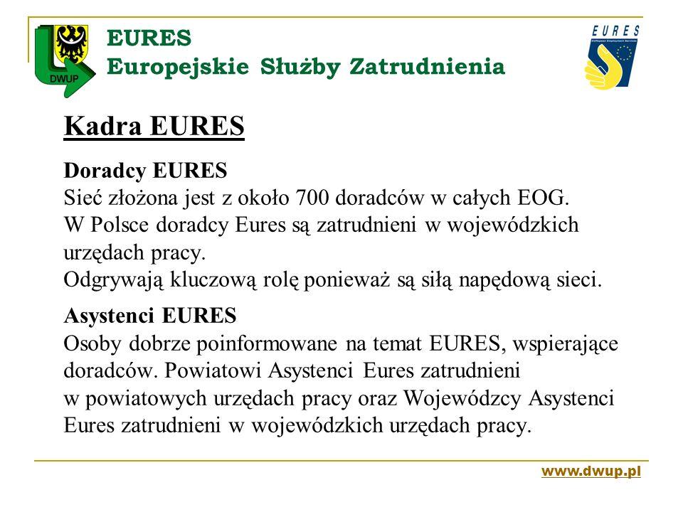 EURES Europejskie Służby Zatrudnienia Kadra EURES Doradcy EURES Sieć złożona jest z około 700 doradców w całych EOG. W Polsce doradcy Eures są zatrudn