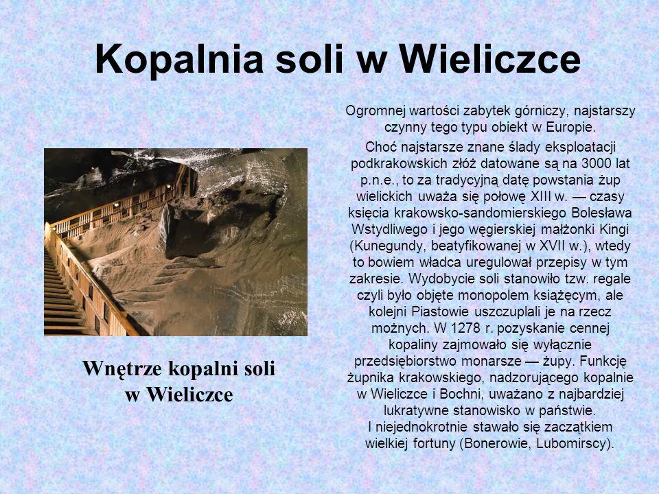 Kopalnia soli w Wieliczce Ogromnej wartości zabytek górniczy, najstarszy czynny tego typu obiekt w Europie.