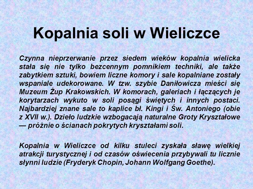 Kopalnia soli w Wieliczce Czynna nieprzerwanie przez siedem wieków kopalnia wielicka stała się nie tylko bezcennym pomnikiem techniki, ale także zabytkiem sztuki, bowiem liczne komory i sale kopalniane zostały wspaniale udekorowane.