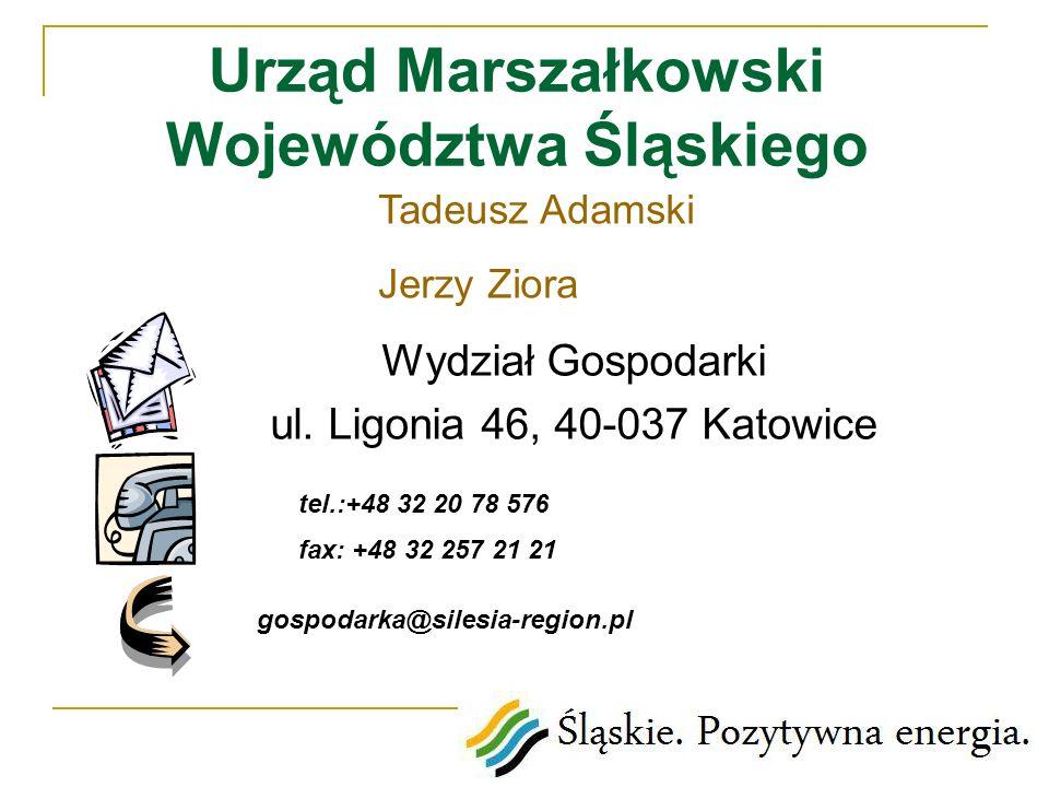 Urząd Marszałkowski Województwa Śląskiego Wydział Gospodarki ul. Ligonia 46, 40-037 Katowice tel.:+48 32 20 78 576 fax: +48 32 257 21 21 gospodarka@si