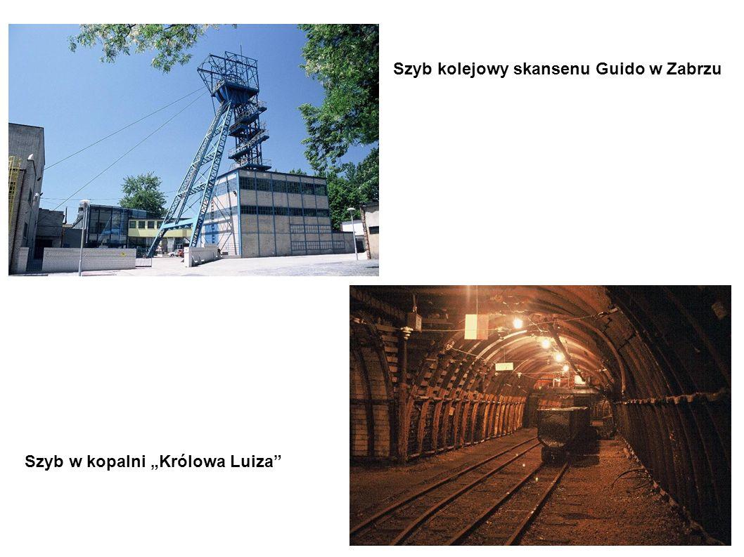 Szyb kolejowy skansenu Guido w Zabrzu Szyb w kopalni Królowa Luiza