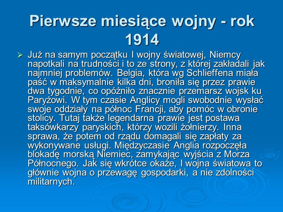 Następnie Kiedy Serbia znalazła się w zagrożeniu wojną, swoją mobilizację ogłosiła w dwa dni później Rosja. Nie chcąc dopuścić do załamania się planu