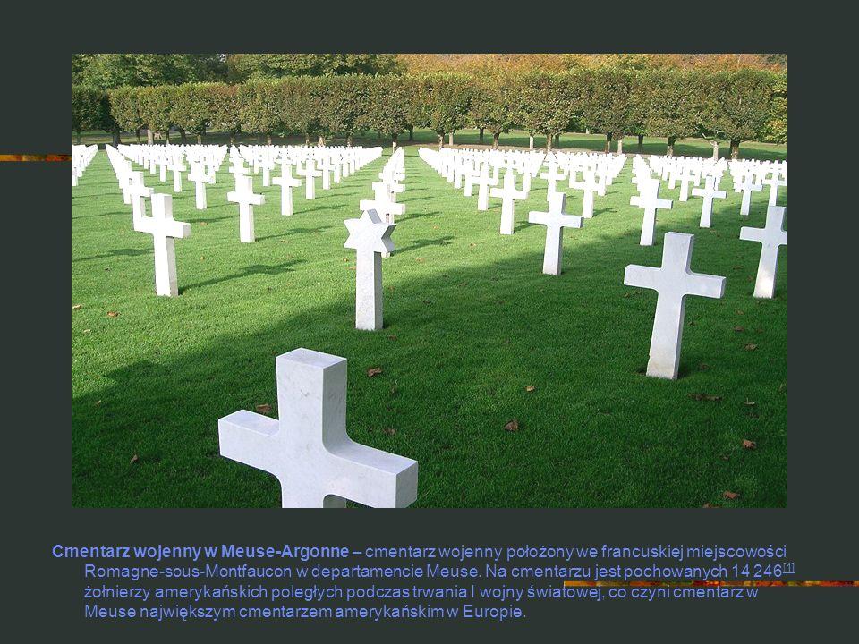 Cmentarz wojenny w Meuse-Argonne – cmentarz wojenny położony we francuskiej miejscowości Romagne-sous-Montfaucon w departamencie Meuse. Na cmentarzu j