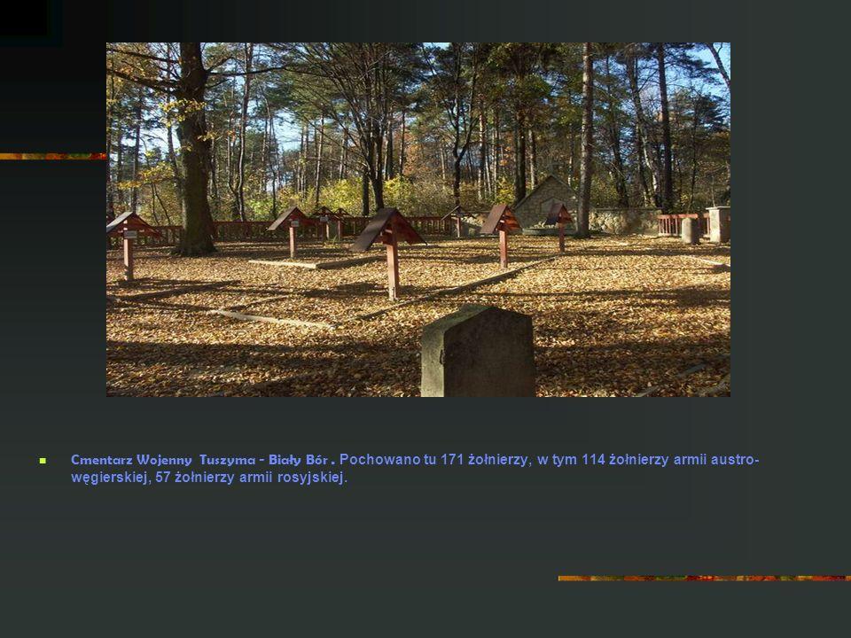Cmentarz Wojenny Tuszyma - Biały Bór. Pochowano tu 171 żołnierzy, w tym 114 żołnierzy armii austro- węgierskiej, 57 żołnierzy armii rosyjskiej.