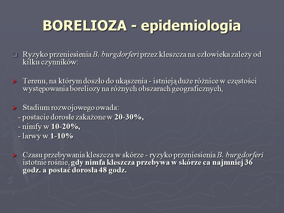 Ryzyko przeniesienia B. burgdorferi przez kleszcza na człowieka zależy od kilku czynników: Ryzyko przeniesienia B. burgdorferi przez kleszcza na człow