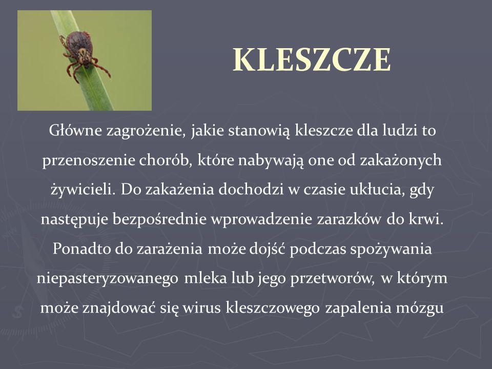 Epidemiologia boreliozy Liczba przypadków i zapadalność na boreliozę w Polsce w latach 2005- 2010