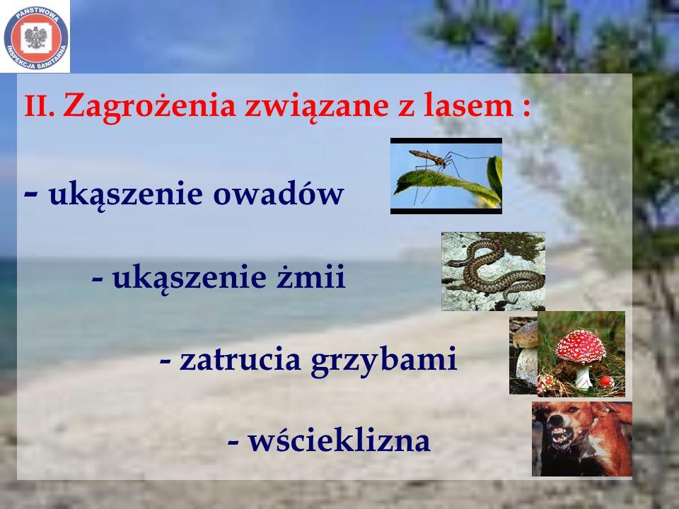 II. Zagrożenia związane z lasem : - ukąszenie owadów - ukąszenie żmii - zatrucia grzybami - wścieklizna