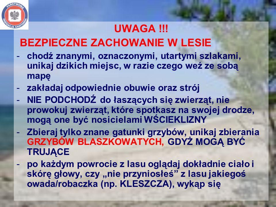 UWAGA !!! BEZPIECZNE ZACHOWANIE W LESIE -chodź znanymi, oznaczonymi, utartymi szlakami, unikaj dzikich miejsc, w razie czego weź ze sobą mapę -zakłada