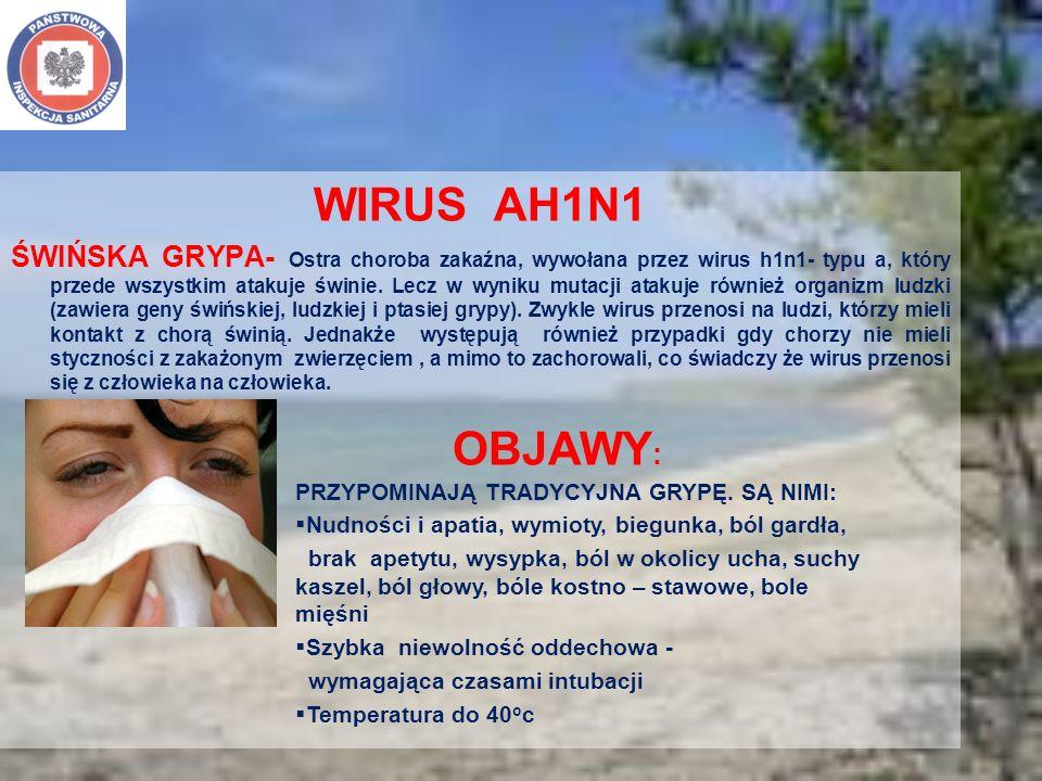 WIRUS AH1N1 ŚWIŃSKA GRYPA- Ostra choroba zakaźna, wywołana przez wirus h1n1- typu a, który przede wszystkim atakuje świnie. Lecz w wyniku mutacji atak
