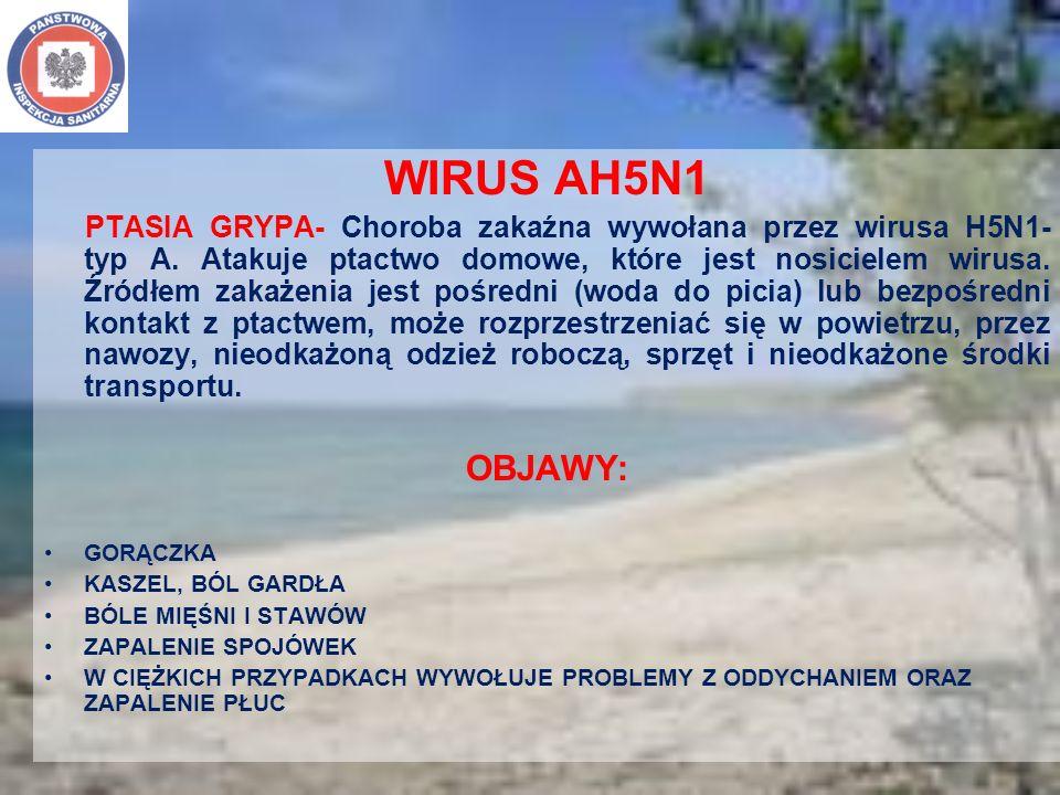 WIRUS AH5N1 PTASIA GRYPA- Choroba zakaźna wywołana przez wirusa H5N1- typ A. Atakuje ptactwo domowe, które jest nosicielem wirusa. Źródłem zakażenia j