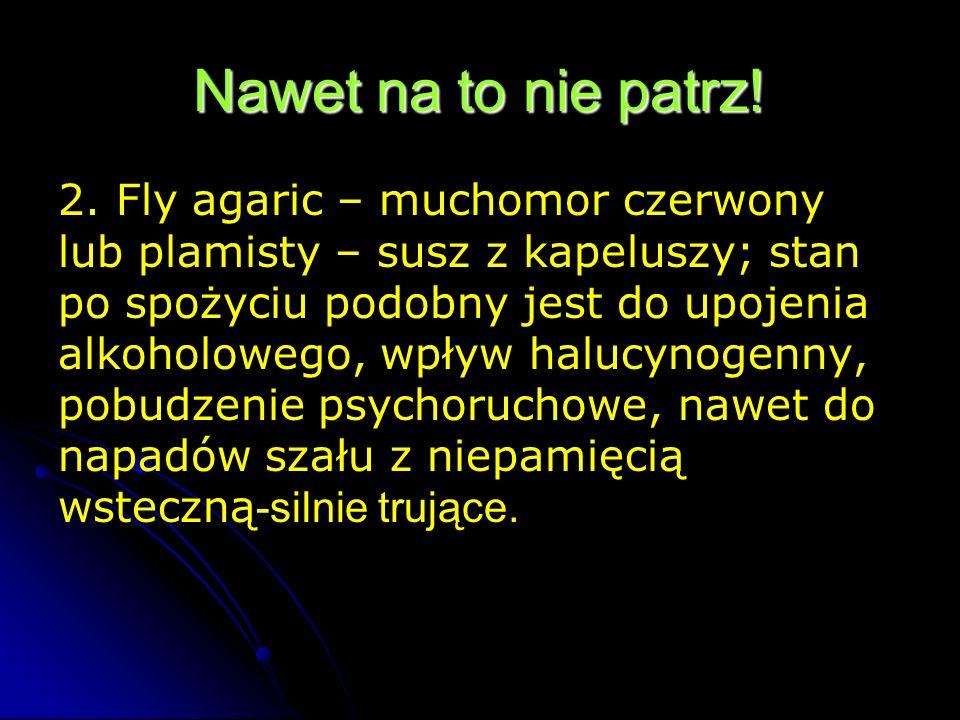 Nawet na to nie patrz! 2. Fly agaric – muchomor czerwony lub plamisty – susz z kapeluszy; stan po spożyciu podobny jest do upojenia alkoholowego, wpły