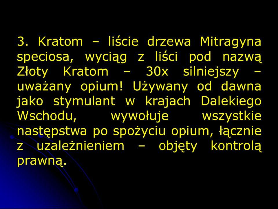 3. Kratom – liście drzewa Mitragyna speciosa, wyciąg z liści pod nazwą Złoty Kratom – 30x silniejszy – uważany opium! Używany od dawna jako stymulant