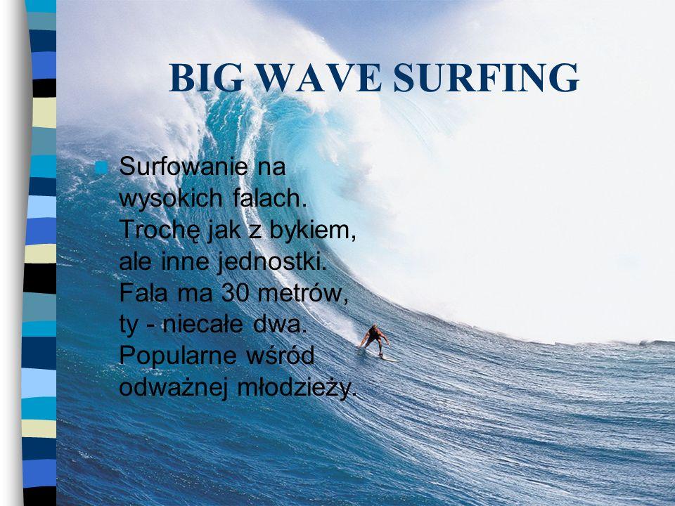 BIG WAVE SURFING Surfowanie na wysokich falach.Trochę jak z bykiem, ale inne jednostki.