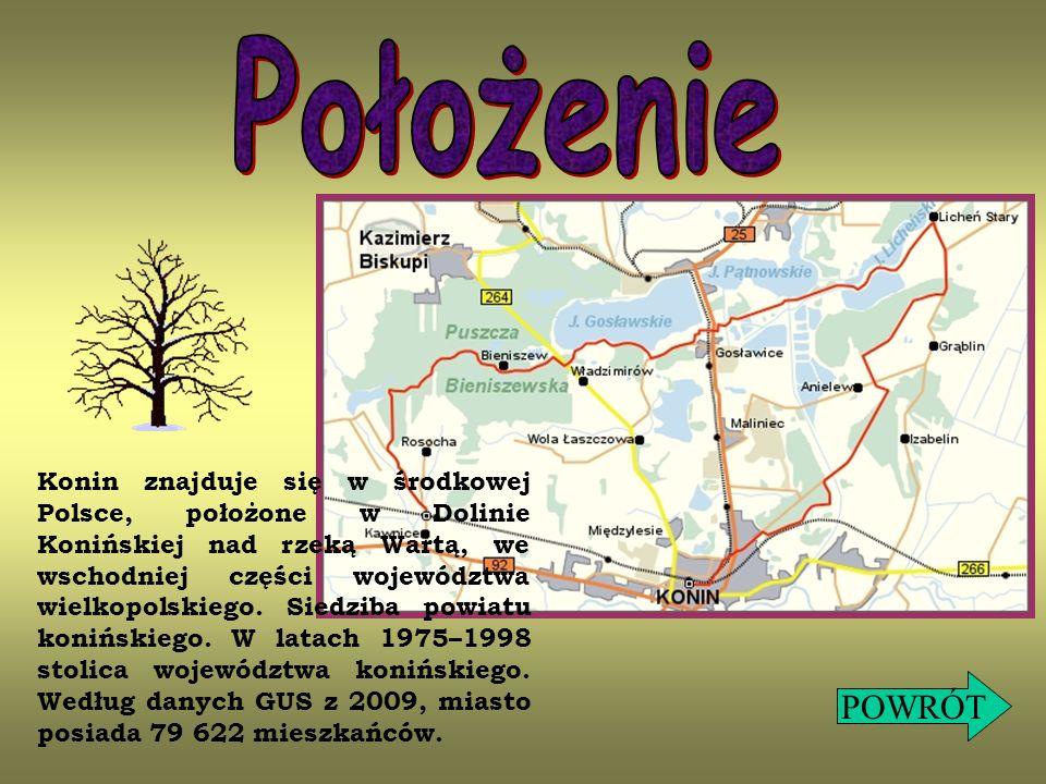 Konin znajduje się w środkowej Polsce, położone w Dolinie Konińskiej nad rzeką Wartą, we wschodniej części województwa wielkopolskiego. Siedziba powia