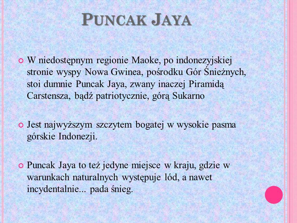 P UNCAK J AYA W niedostępnym regionie Maoke, po indonezyjskiej stronie wyspy Nowa Gwinea, pośrodku Gór Śnieżnych, stoi dumnie Puncak Jaya, zwany inacz