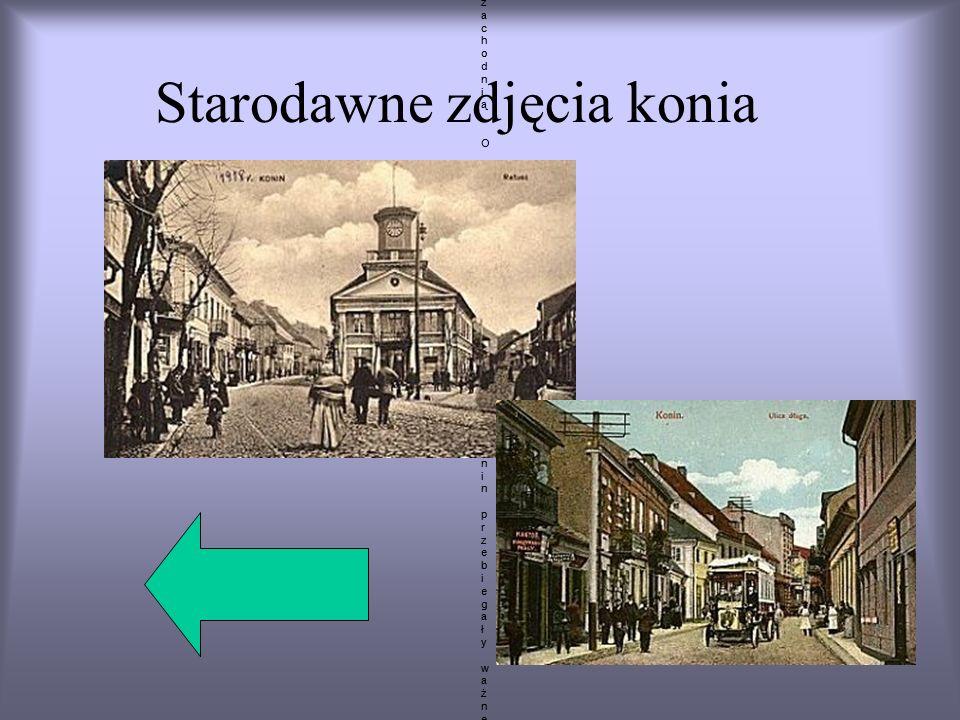 Starodawne zdjęcia konia Konin leży w środkowej części Polski. Tak dawniej jak i dziś okolice miasta są ważnym węzłem komunikacyjnym łączącym północ k