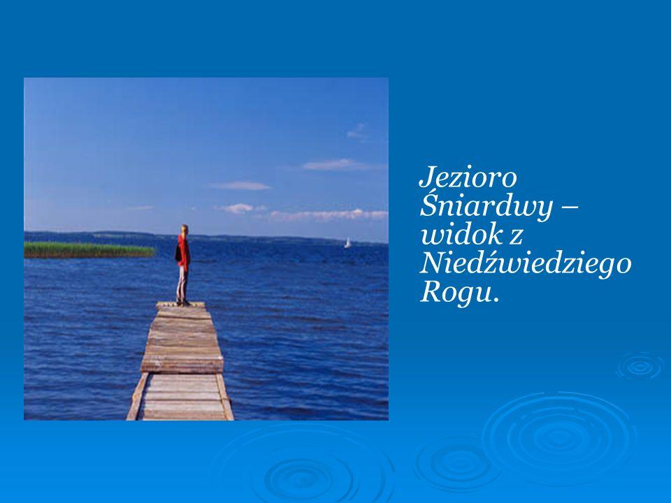 Jezioro Śniardwy – widok z Niedźwiedziego Rogu.
