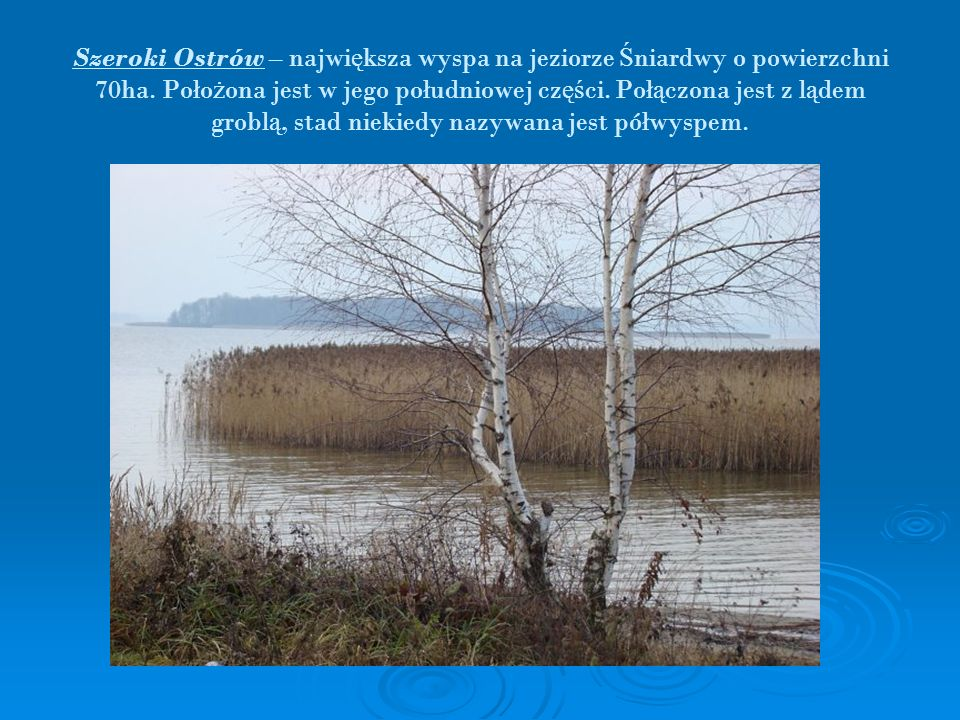 Szeroki Ostrów – najwi ę ksza wyspa na jeziorze Ś niardwy o powierzchni 70ha. Poło ż ona jest w jego południowej cz ęś ci. Poł ą czona jest z l ą dem