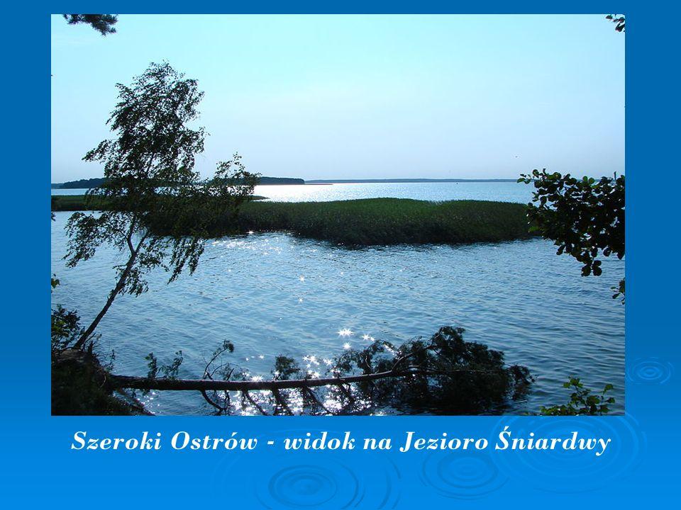 Szeroki Ostrów - widok na Jezioro Ś niardwy