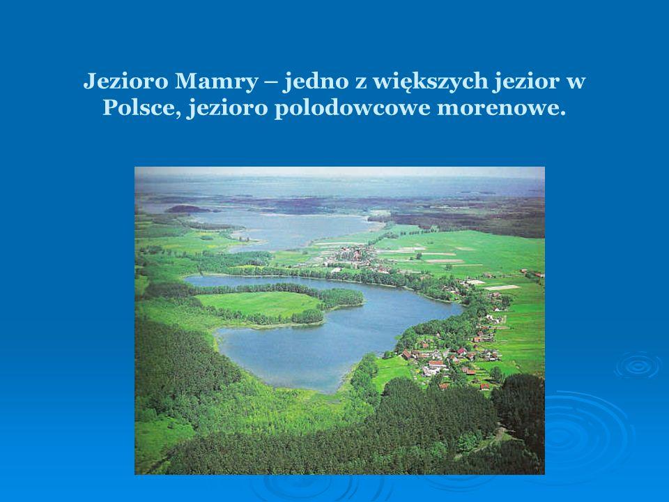 Jezioro Mamry – jedno z większych jezior w Polsce, jezioro polodowcowe morenowe.