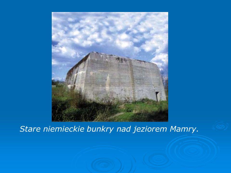 Stare niemieckie bunkry nad jeziorem Mamry.