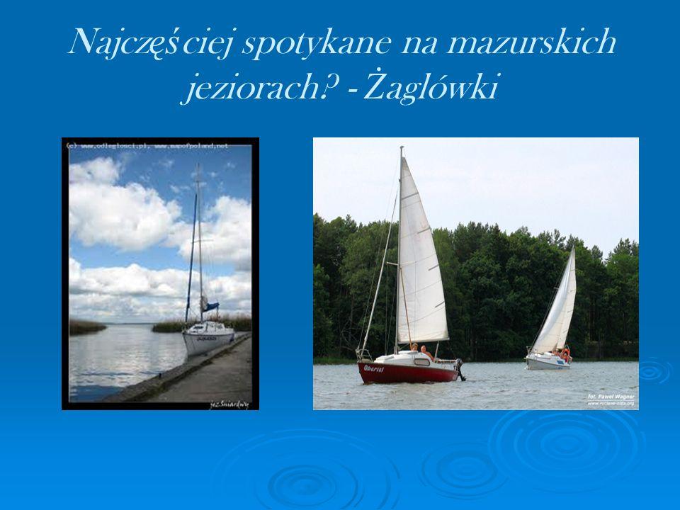 Najcz ęś ciej spotykane na mazurskich jeziorach? - Ż aglówki