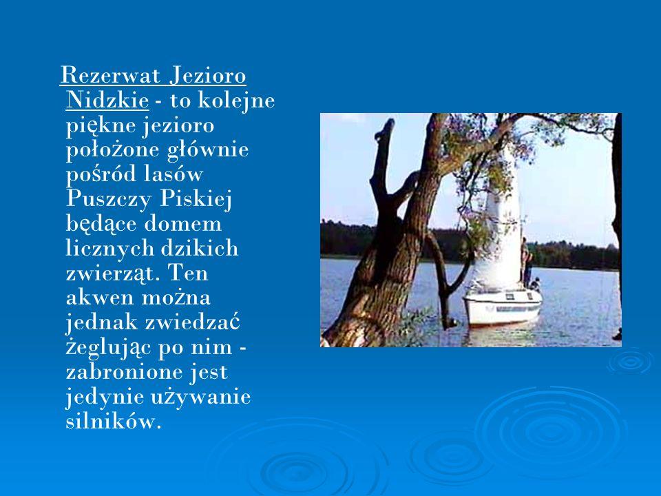 Rezerwat Jezioro Nidzkie - to kolejne pi ę kne jezioro poło ż one głównie po ś ród lasów Puszczy Piskiej b ę d ą ce domem licznych dzikich zwierz ą t.