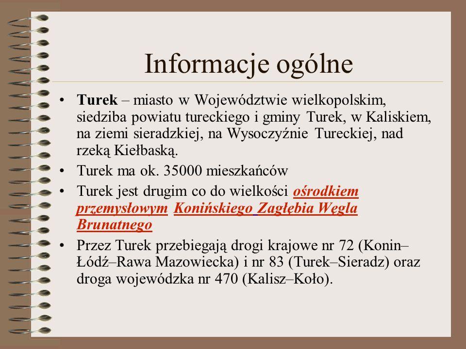 Informacje ogólne Turek – miasto w Województwie wielkopolskim, siedziba powiatu tureckiego i gminy Turek, w Kaliskiem, na ziemi sieradzkiej, na Wysocz