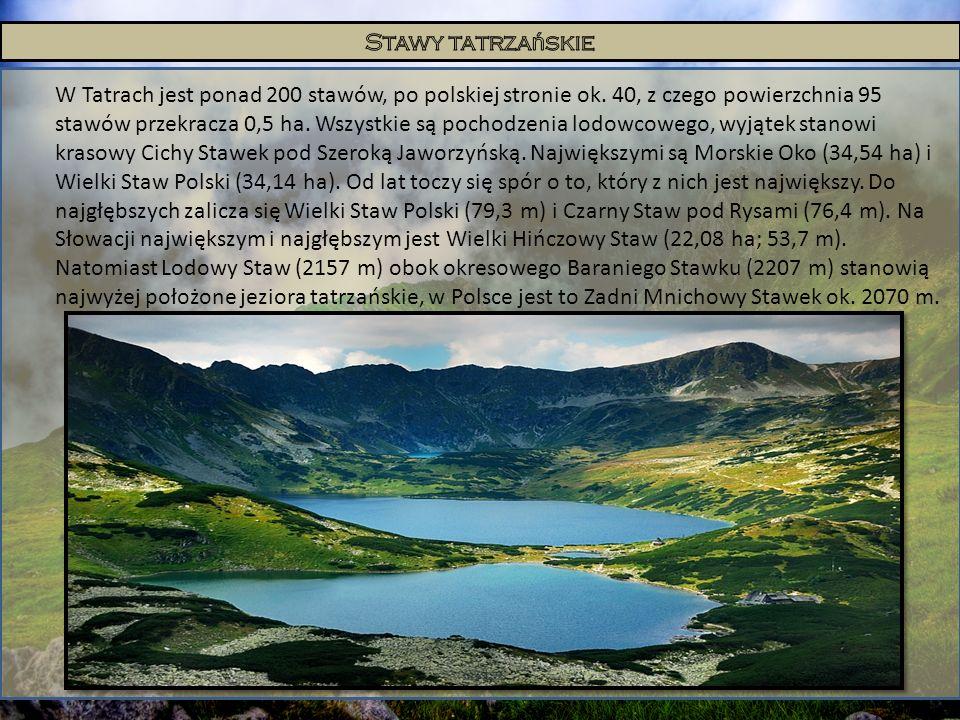 W Tatrach jest ponad 200 stawów, po polskiej stronie ok. 40, z czego powierzchnia 95 stawów przekracza 0,5 ha. Wszystkie są pochodzenia lodowcowego, w