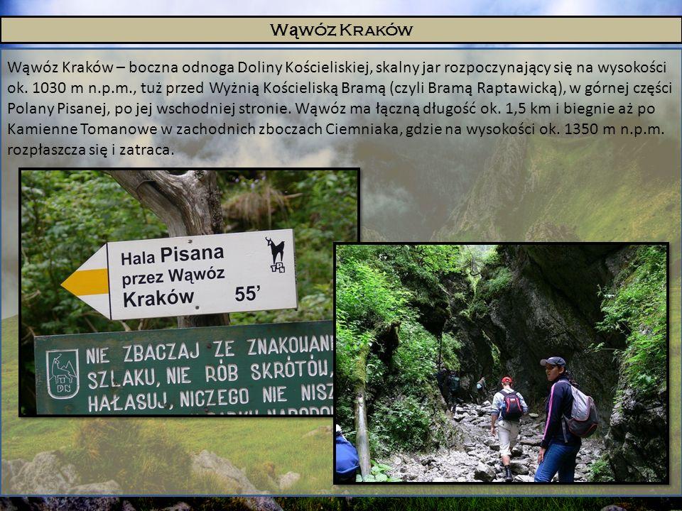W ą wóz Kraków Wąwóz Kraków – boczna odnoga Doliny Kościeliskiej, skalny jar rozpoczynający się na wysokości ok. 1030 m n.p.m., tuż przed Wyżnią Kości