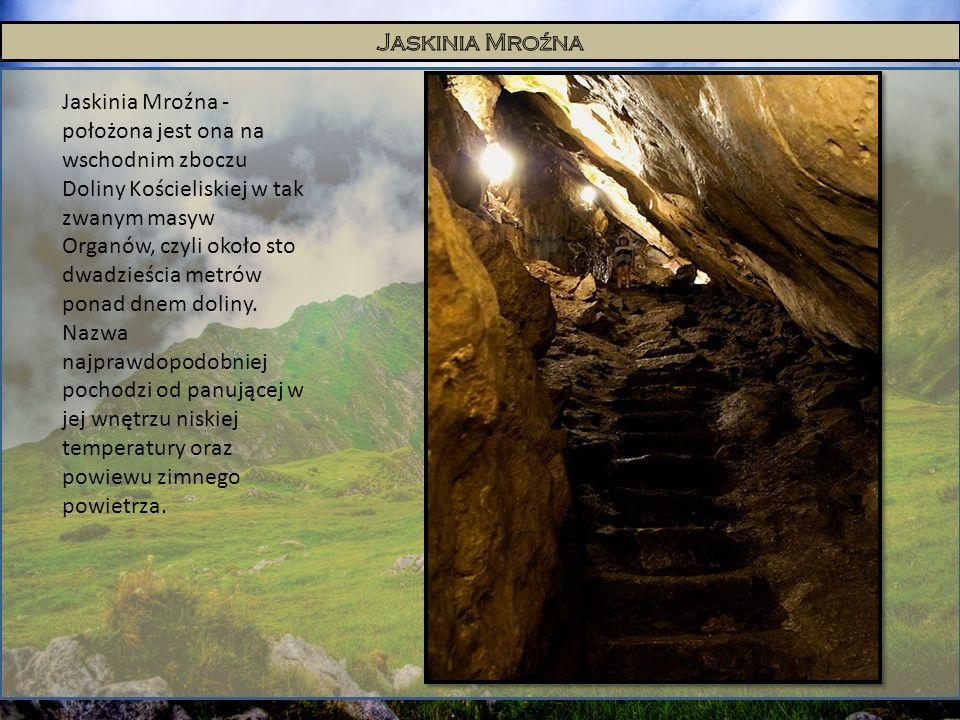Jaskinia Mroźna - położona jest ona na wschodnim zboczu Doliny Kościeliskiej w tak zwanym masyw Organów, czyli około sto dwadzieścia metrów ponad dnem