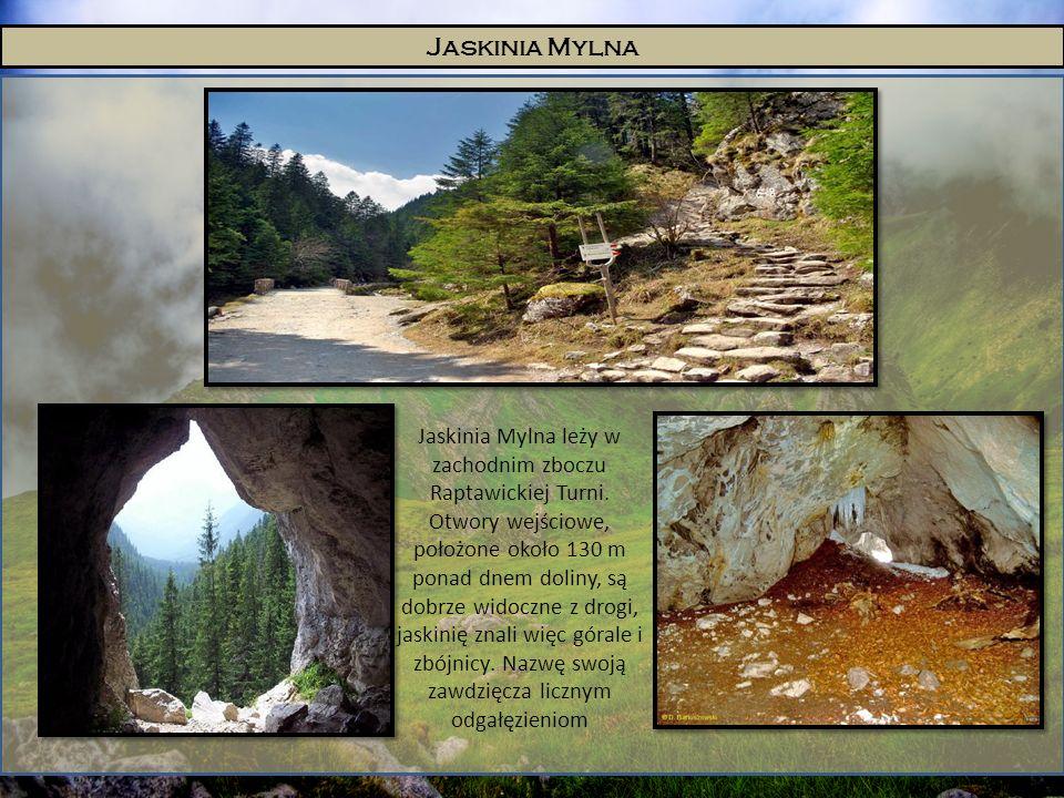 Jaskinia Mylna Jaskinia Mylna leży w zachodnim zboczu Raptawickiej Turni. Otwory wejściowe, położone około 130 m ponad dnem doliny, są dobrze widoczne