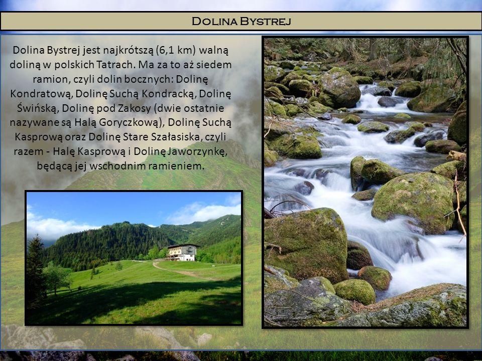 Dolina Bystrej Dolina Bystrej jest najkrótszą (6,1 km) walną doliną w polskich Tatrach. Ma za to aż siedem ramion, czyli dolin bocznych: Dolinę Kondra