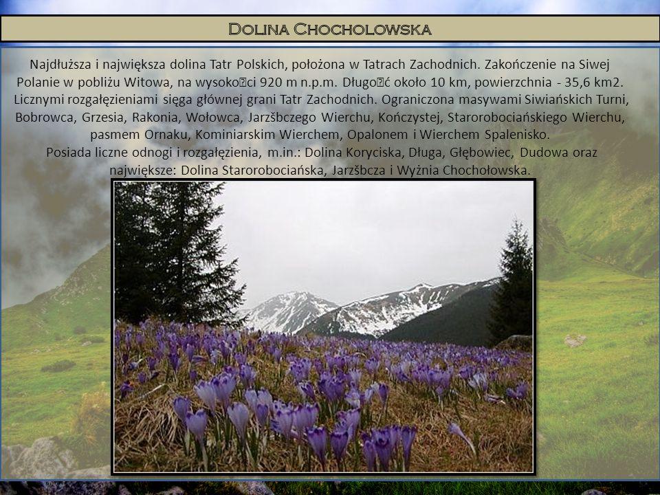 Najdłuższa i największa dolina Tatr Polskich, położona w Tatrach Zachodnich. Zakończenie na Siwej Polanie w pobliżu Witowa, na wysokoœci 920 m n.p.m.