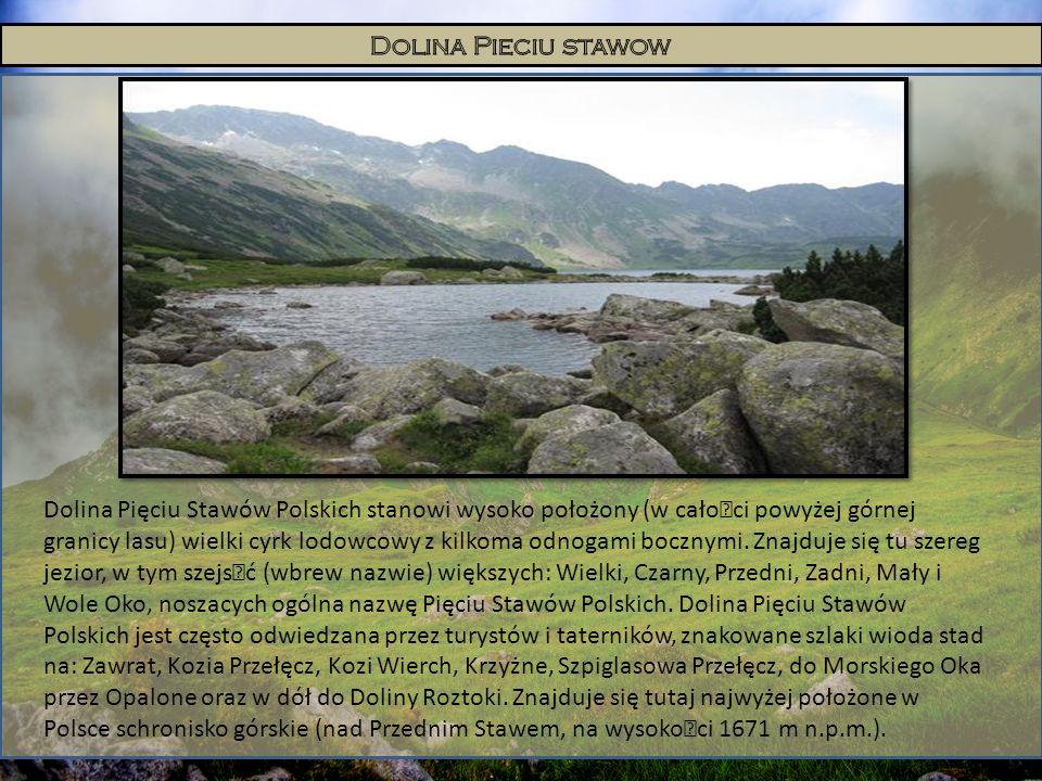 Dolina Pięciu Stawów Polskich stanowi wysoko położony (w całoœci powyżej górnej granicy lasu) wielki cyrk lodowcowy z kilkoma odnogami bocznymi. Znajd