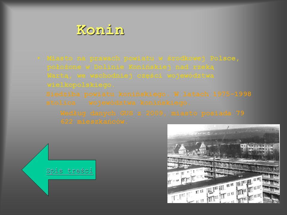 Pierwsza wzmianka o mieście Koninie (wójcie Gosławie z Konina) pochodzi z 1293 r.