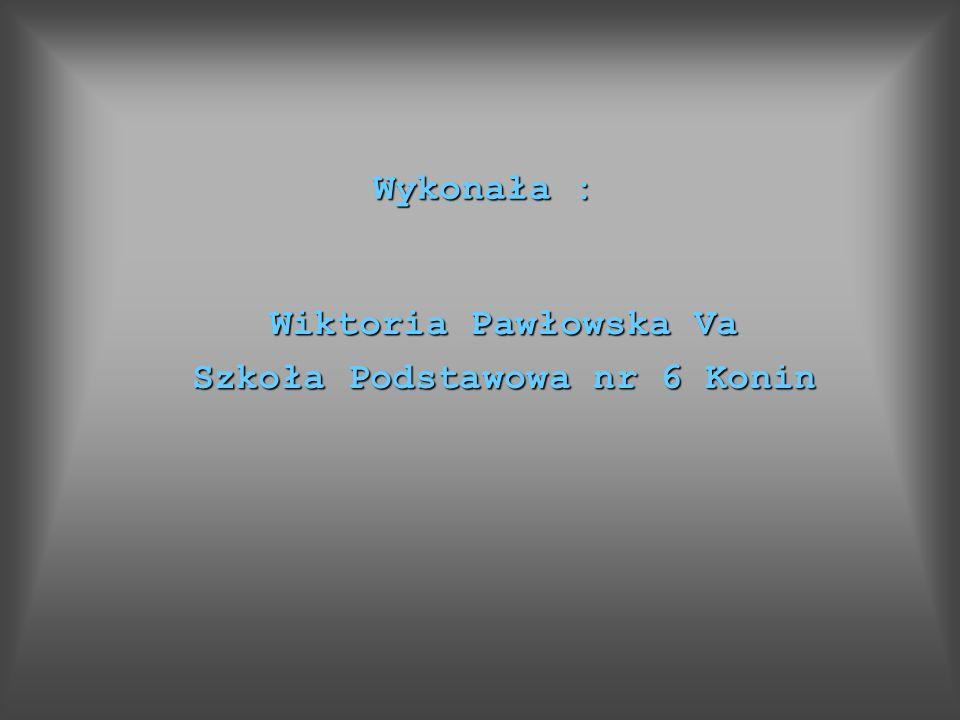 Wykonała : Wiktoria Pawłowska Va Szkoła Podstawowa nr 6 Konin