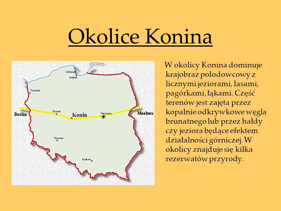 Okolice Konina W okolicy Konina dominuje krajobraz polodowcowy z licznymi jeziorami, lasami, pagórkami, łąkami. Część terenów jest zajęta przez kopaln