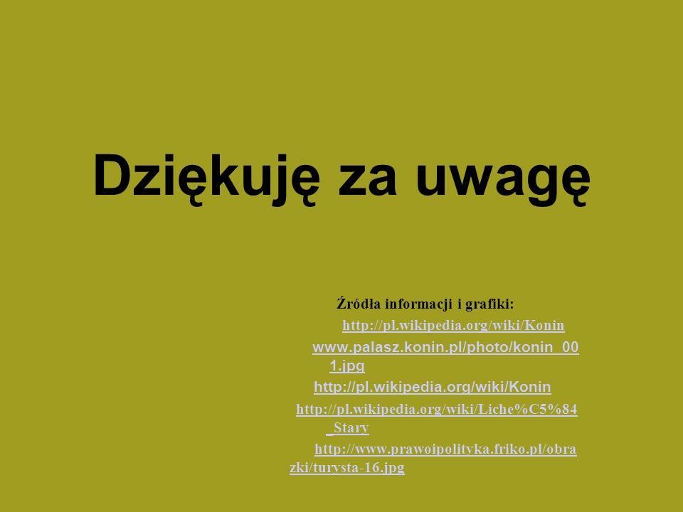 Dziękuję za uwagę Źródła informacji i grafiki: http://pl.wikipedia.org/wiki/Konin www.palasz.konin.pl/photo/konin_00 1.jpg www.palasz.konin.pl/photo/k
