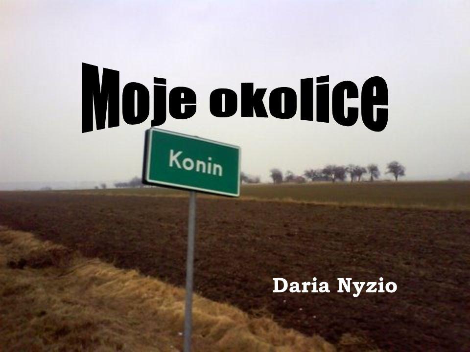 Źródła tekstów: http://pl.wikipedia.org/wiki/Konin http://pl.wikipedia.org/wiki/Nadwarcia%C5%84ski_Park_Krajobrazo wy http://www.lichen.pl/