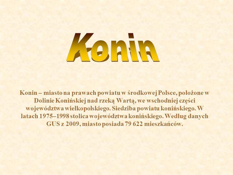 W okolicy Konina dominuje krajobraz polodowcowy z licznymi jeziorami, lasami, pagórkami, łąkami.