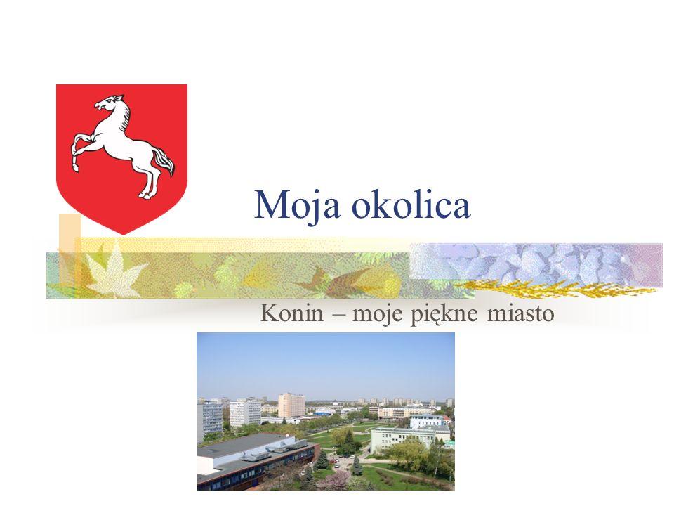 Moja okolica Konin – moje piękne miasto
