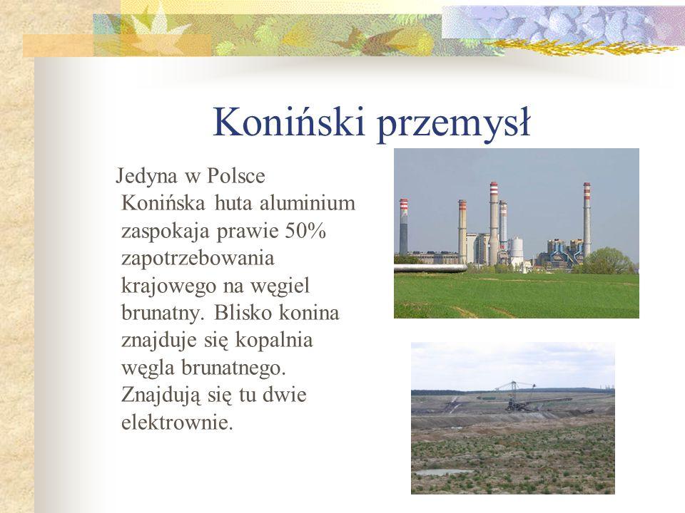 Koniński przemysł Jedyna w Polsce Konińska huta aluminium zaspokaja prawie 50% zapotrzebowania krajowego na węgiel brunatny. Blisko konina znajduje si