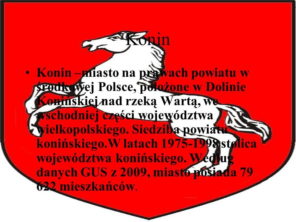 Konin Konin –miasto na prawach powiatu w środkowej Polsce, położone w Dolinie Konińskiej nad rzeką Wartą, we wschodniej części województwa wielkopolsk