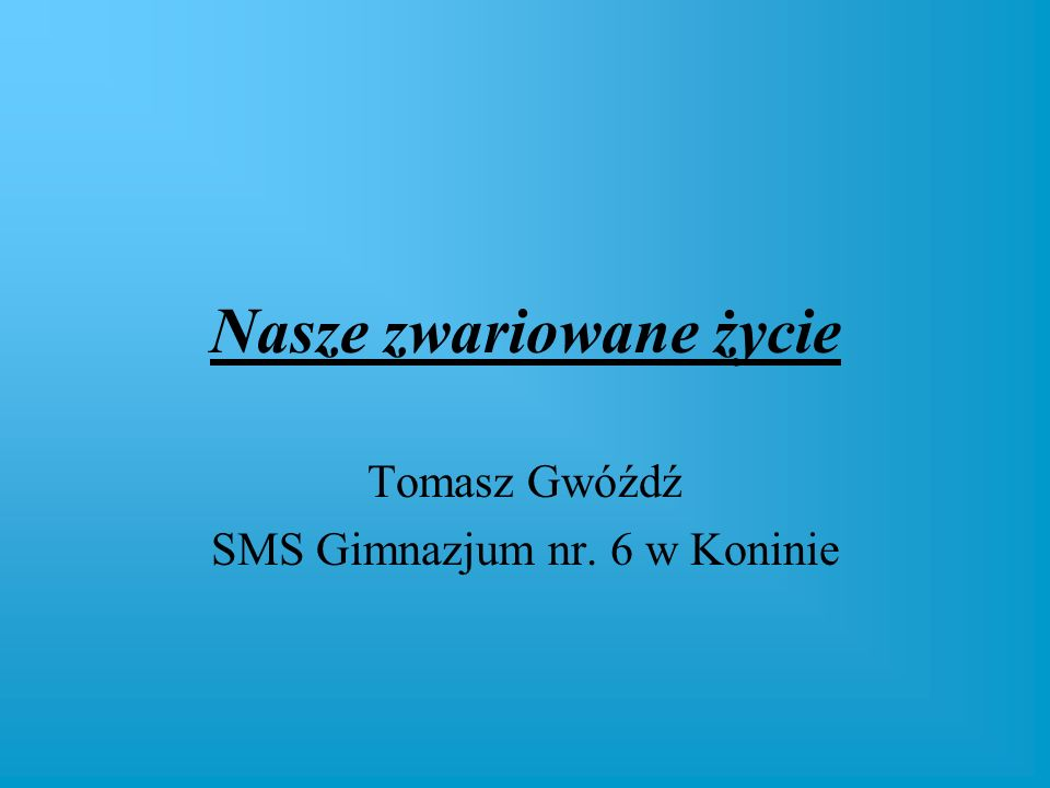Nasze zwariowane życie Tomasz Gwóźdź SMS Gimnazjum nr. 6 w Koninie