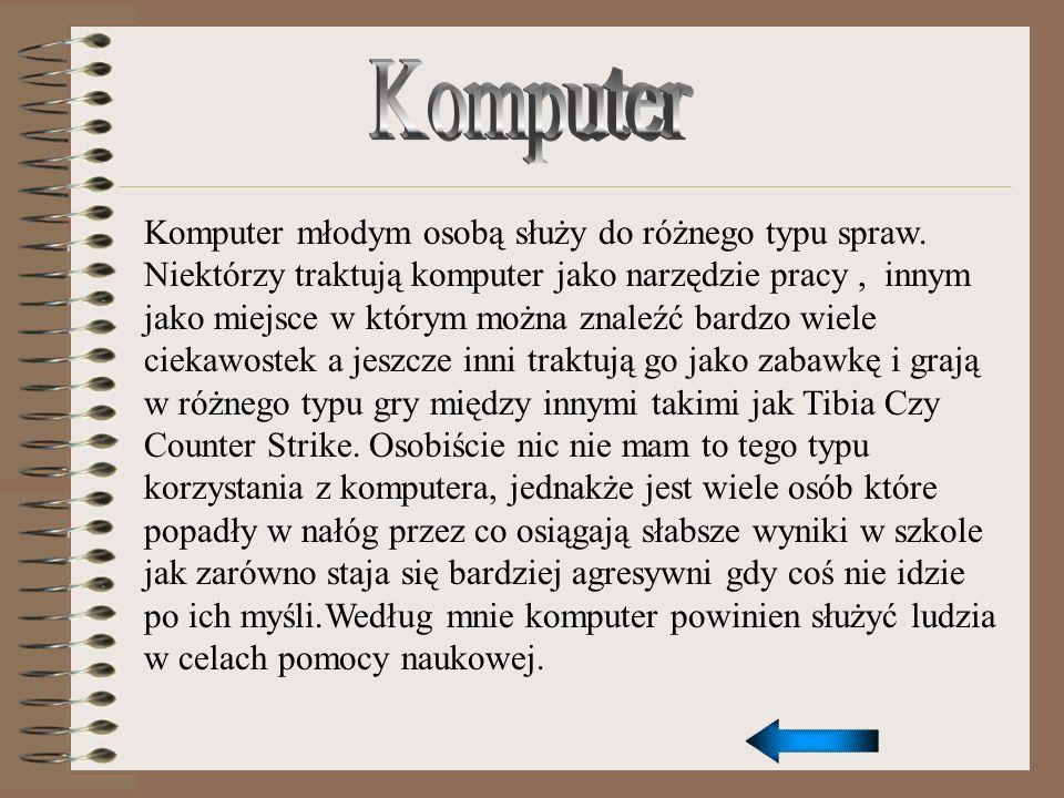 Komputer młodym osobą służy do różnego typu spraw. Niektórzy traktują komputer jako narzędzie pracy, innym jako miejsce w którym można znaleźć bardzo
