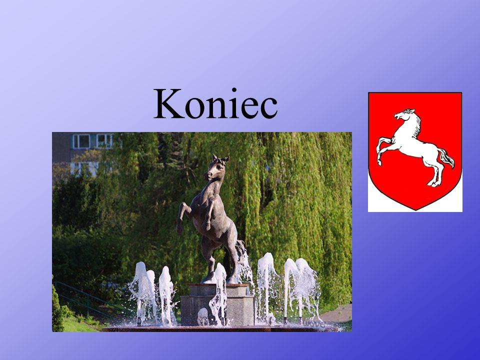 Park im. Fryderyka Chopina w Koninie Znajduje się tam wiele gatunków roślin i zwierząt. Interesujące są znajdujące się tam w stawie dzikie ptaki. Możn