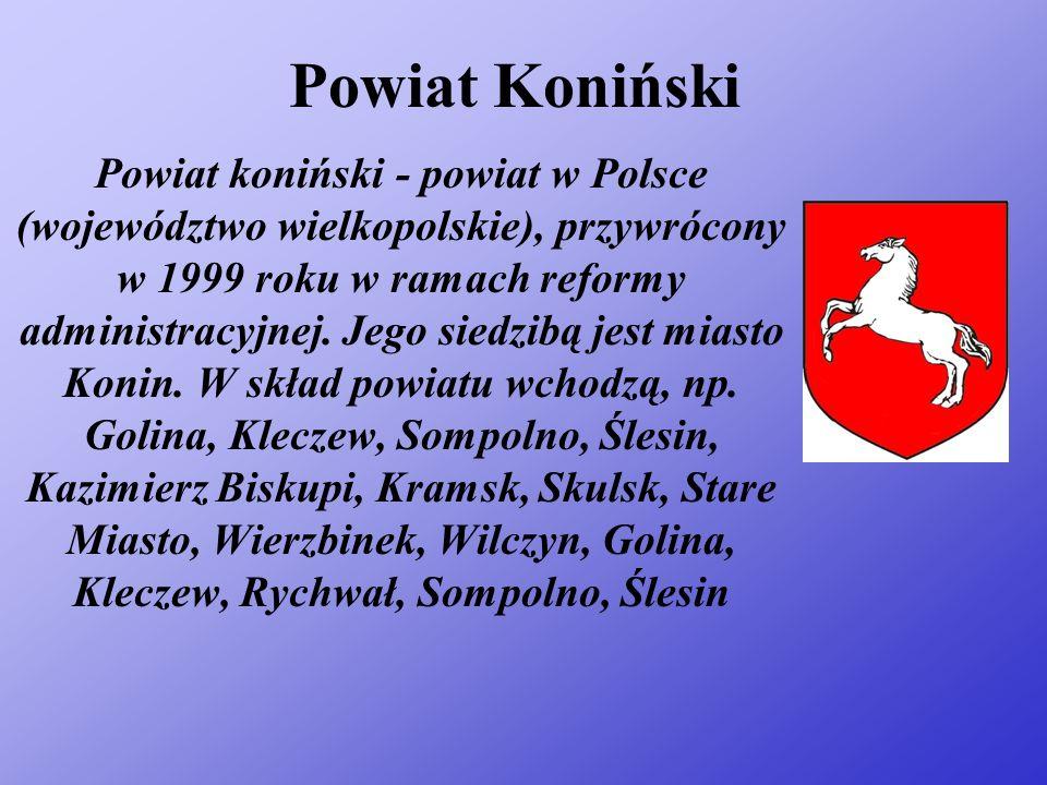 Powiat Koniński Powiat koniński - powiat w Polsce (województwo wielkopolskie), przywrócony w 1999 roku w ramach reformy administracyjnej.