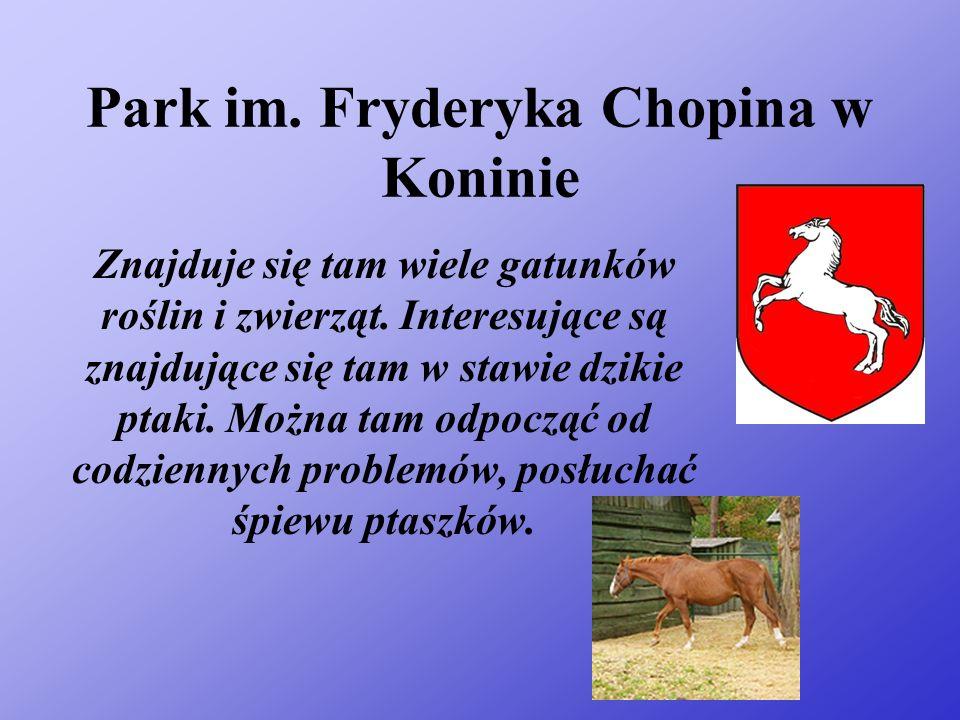 Park im.Fryderyka Chopina w Koninie Znajduje się tam wiele gatunków roślin i zwierząt.